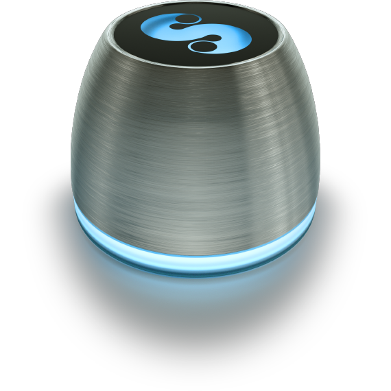 meet-spin-remote